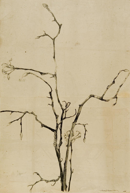 21x31_Flowering Magnolia I.jpg