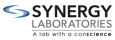 synergy+logo.png
