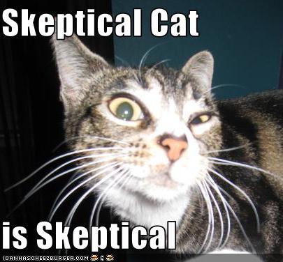 skeptical-cat.jpeg