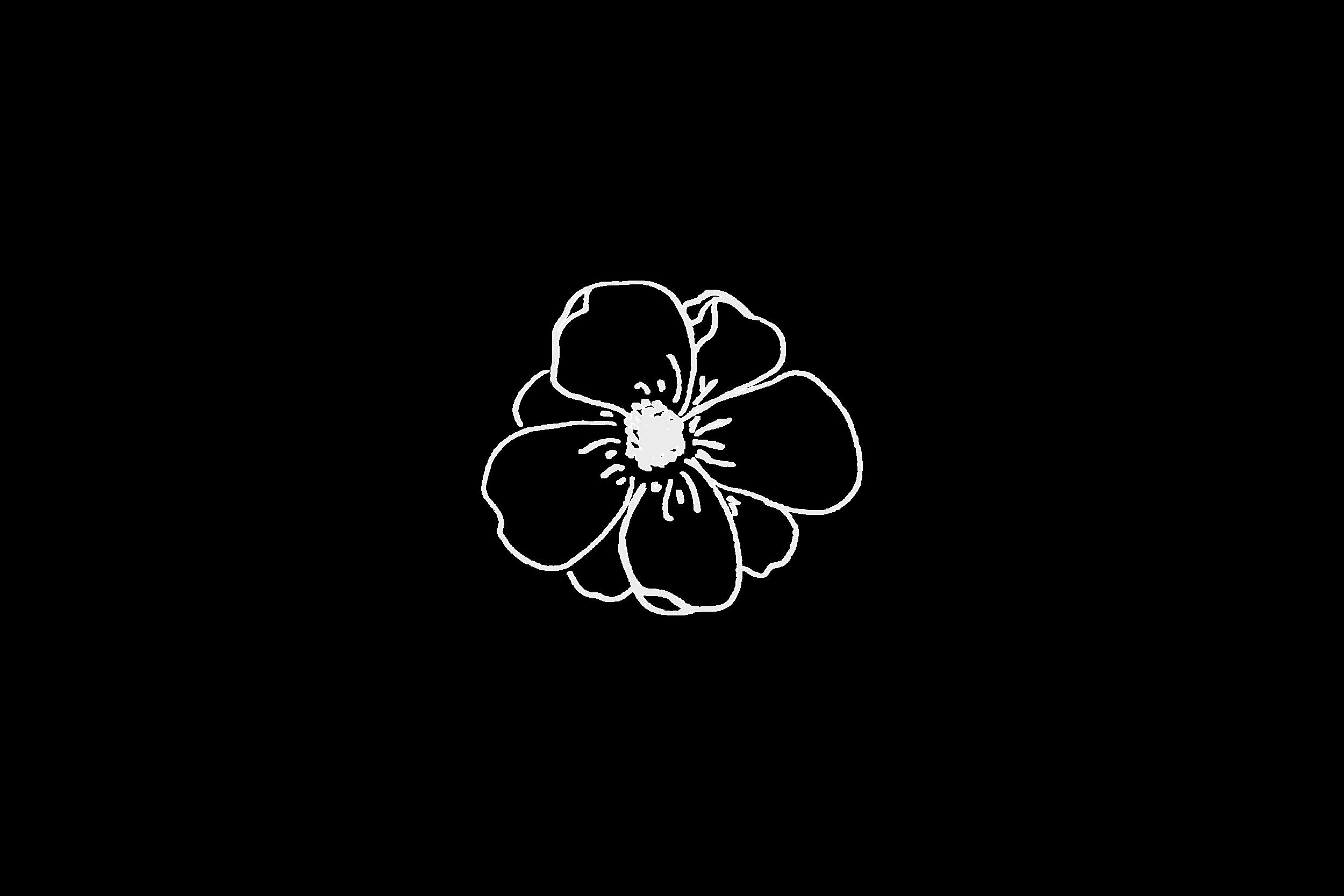 Sidonnan ammattilainen - Kruunaa elämäsi kukkasin.Teemme kauniit ja yksilölliset kukka-asetelmat tuoreista kukista. Kukat suunnitellaan aina paikkaan, teemaan ja juhlien sankarille sopiviksi. Meiltä saat kukka-asetelmat, jotka muistetaan!