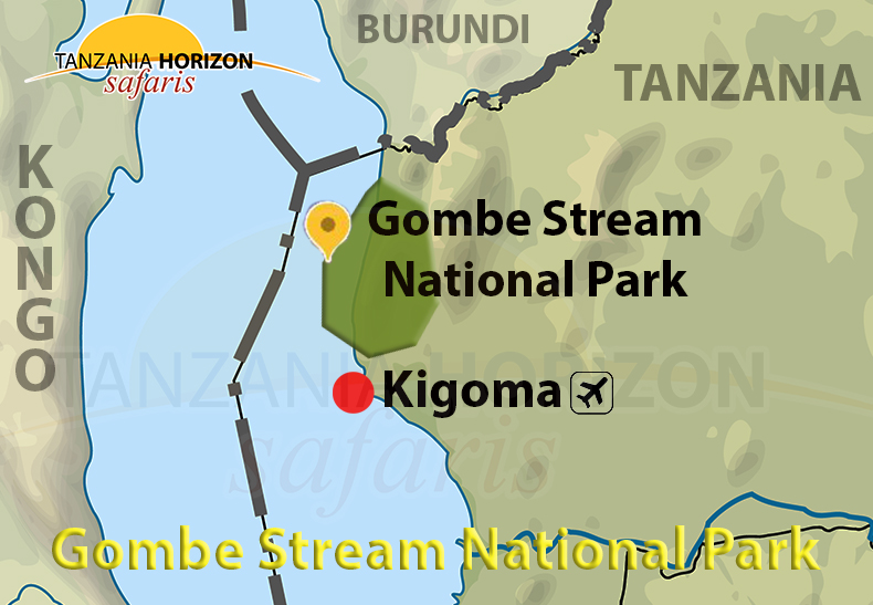 GOMBE STREAM NATIONAL PARK / TANZANIA HORIZON SAFARIS