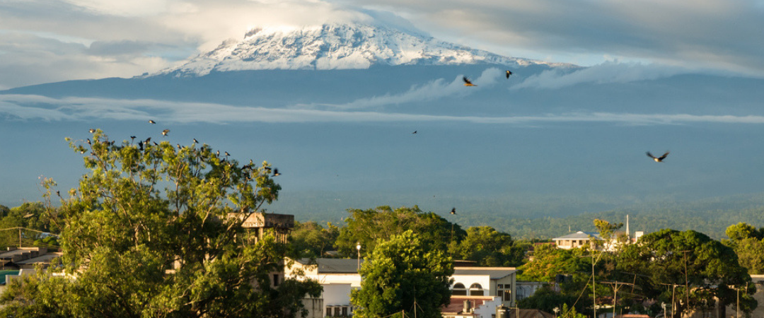 VIEW OF KILIMANJARO SEEN FROM MOSHI TOWN