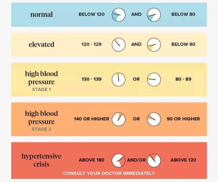 Tanzania+Horizon+Safaris+Blood+Pressure+bpm+Chart.jpg