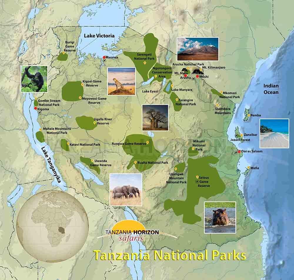 Tanzania Horizon Safaris - Budget Tanzania Safari, Serengeti ...