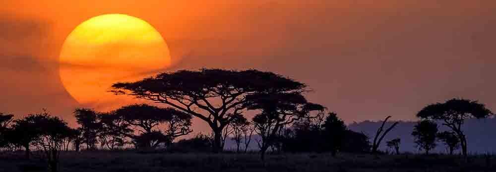 Join a Safari Group -