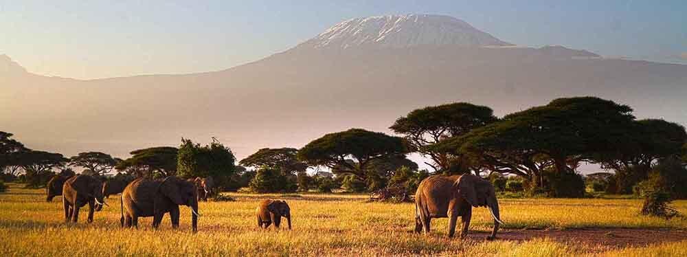 DAYTRIPS IN TANZANIA -