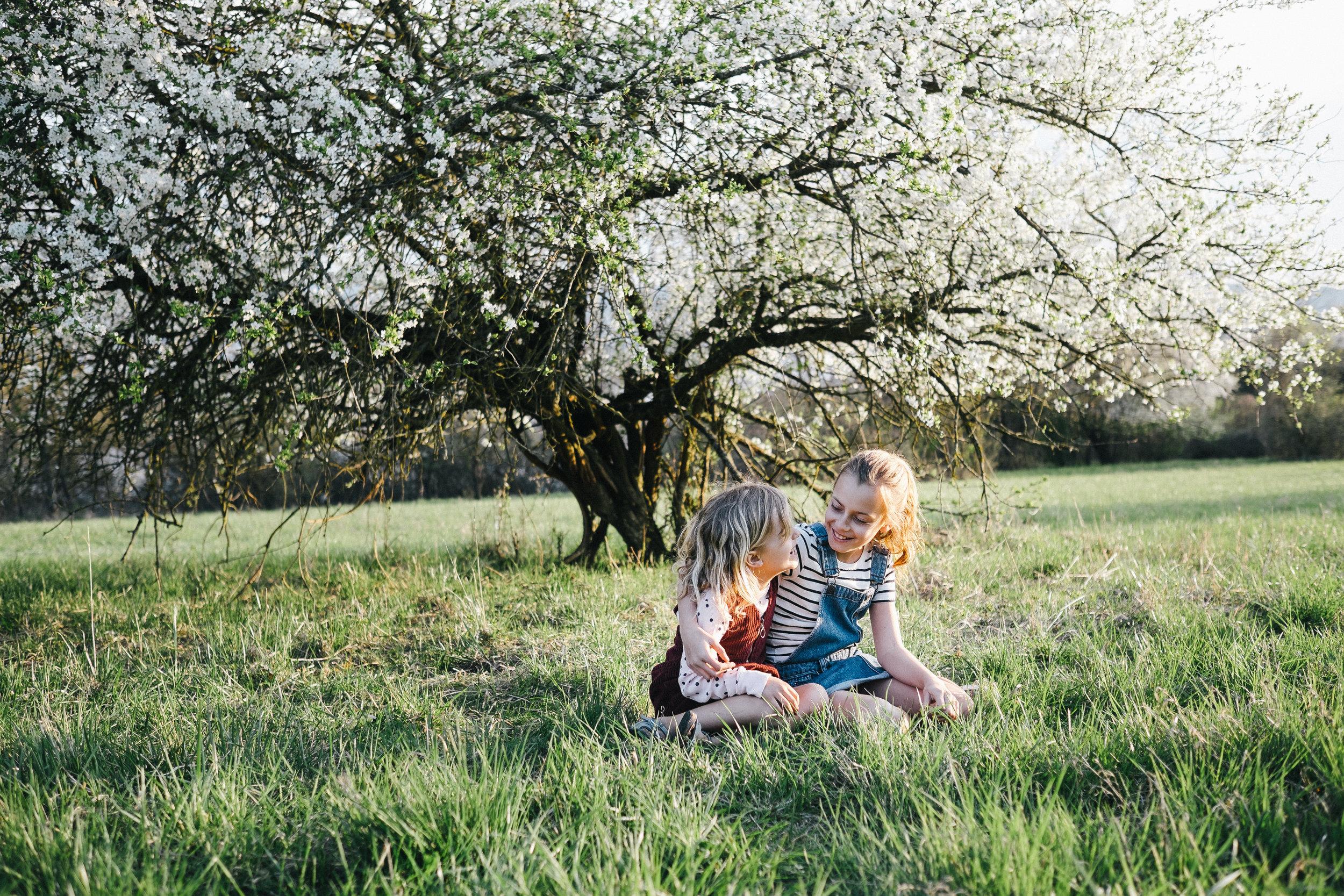 Streuobstwiese - Viola Mueller-Gerbes Photography-1.jpg