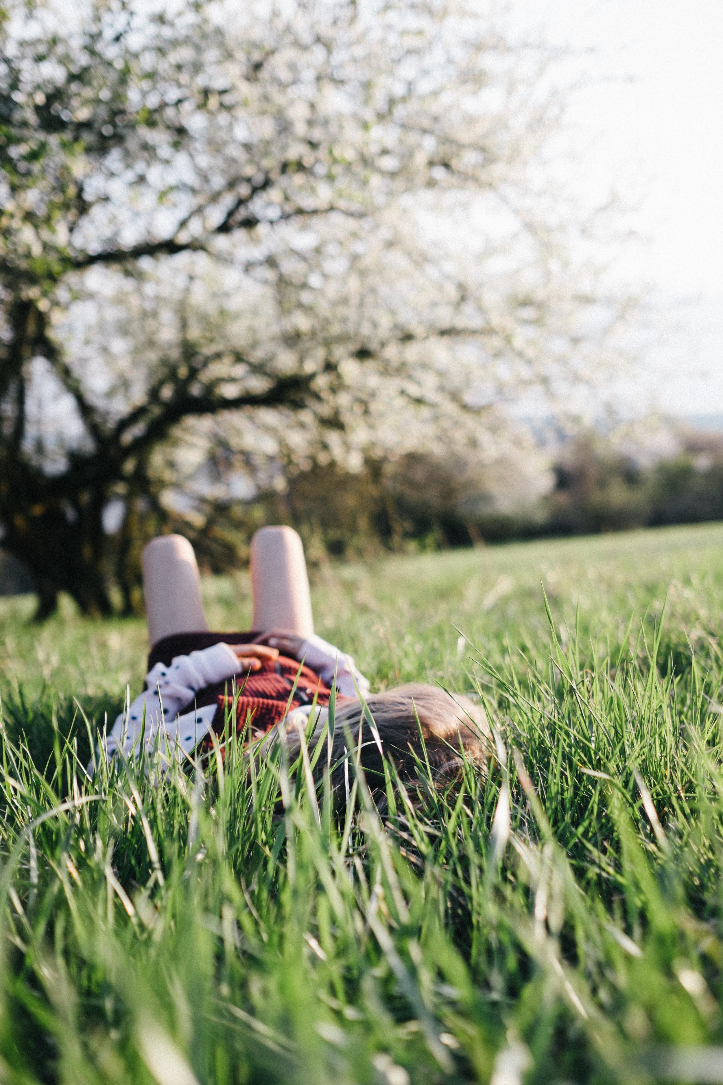 Streuobstwiese - Viola Mueller-Gerbes Photography-3.jpg