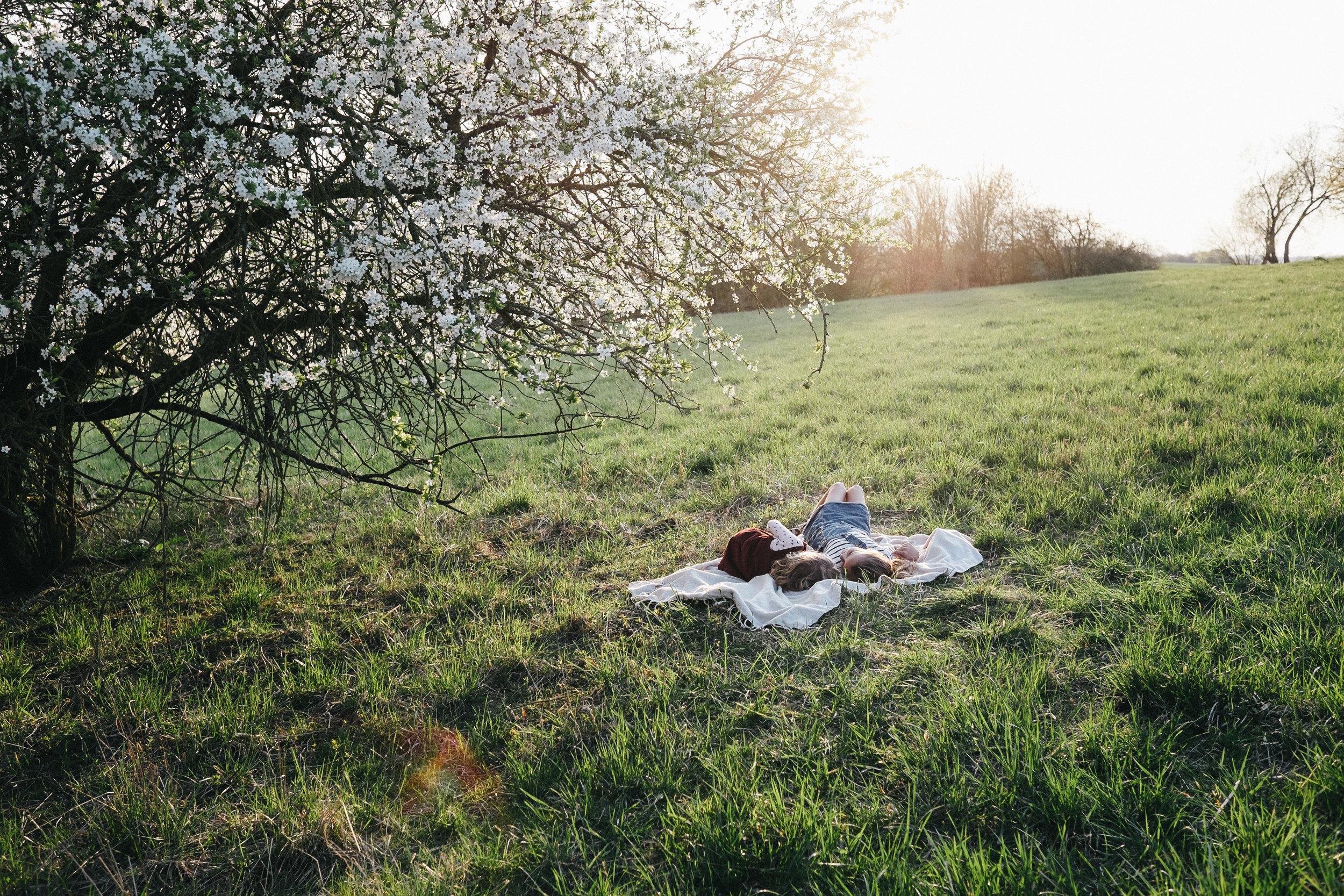 Streuobstwiese - Viola Mueller-Gerbes Photography-8.jpg