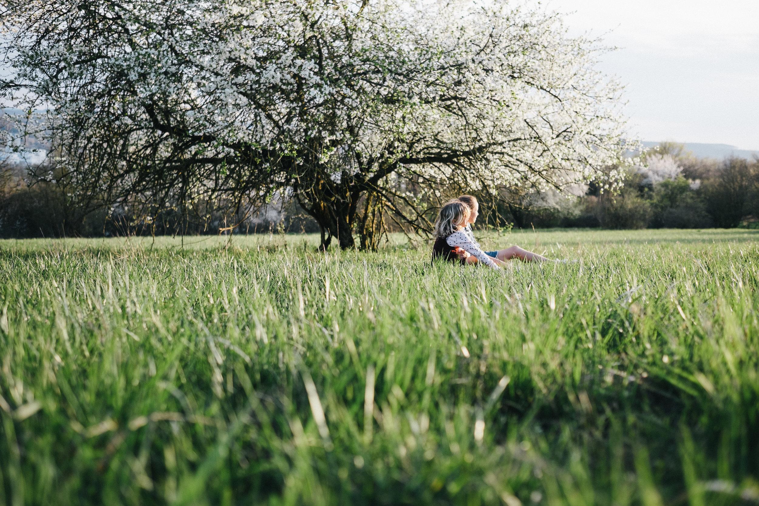 Streuobstwiese - Viola Mueller-Gerbes Photography-10.jpg