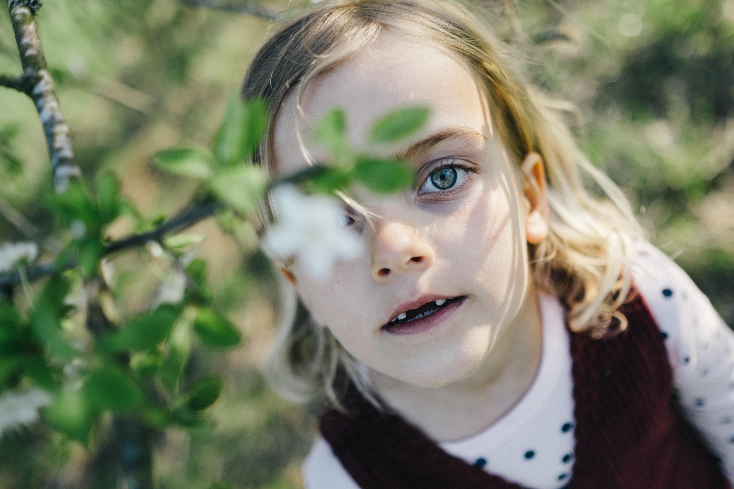 Streuobstwiese - Viola Mueller-Gerbes Photography-16.jpg