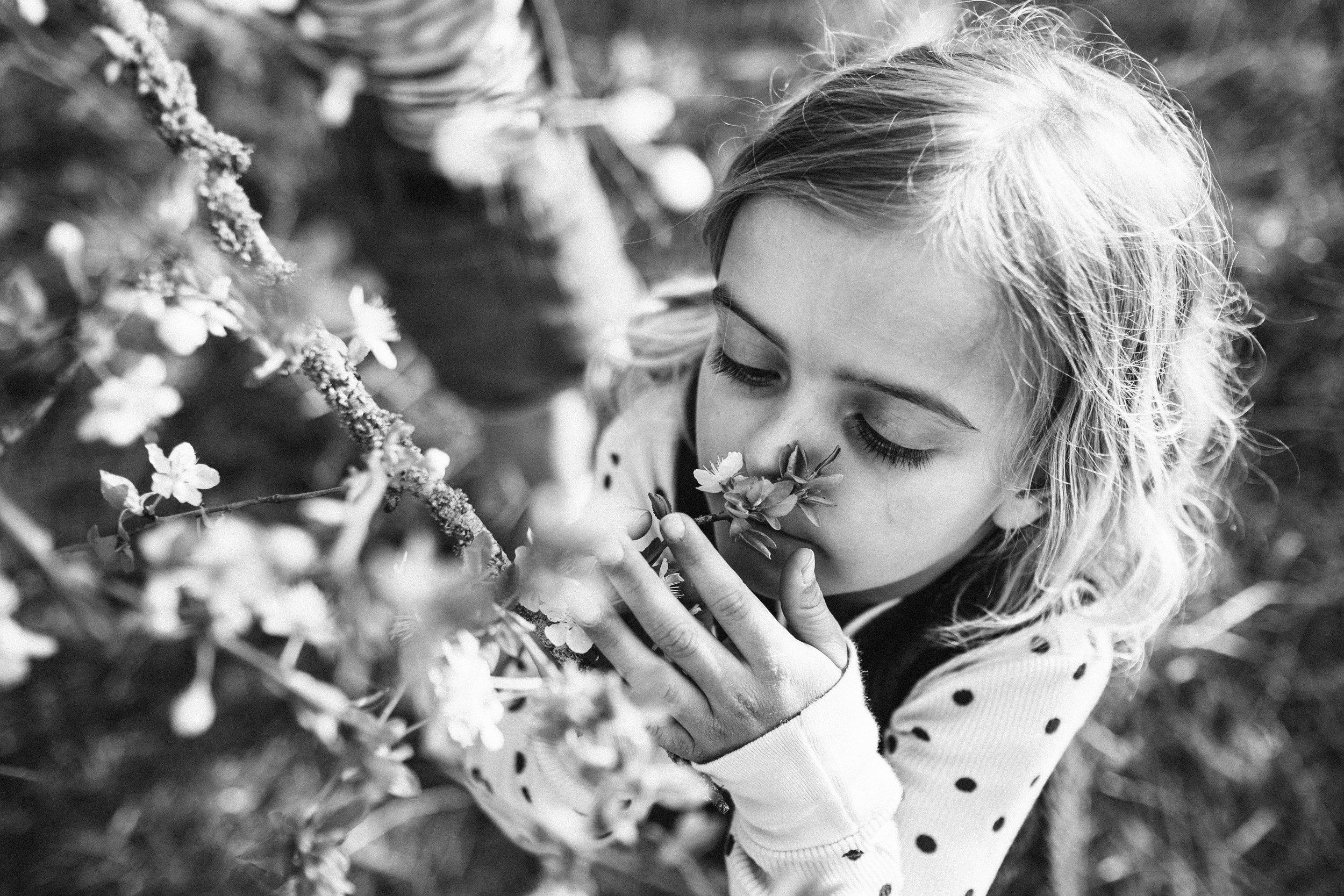 Streuobstwiese - Viola Mueller-Gerbes Photography-17.jpg