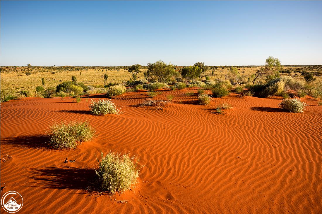 Superschöne erste Sanddünen auf dem Weg zum Uluru