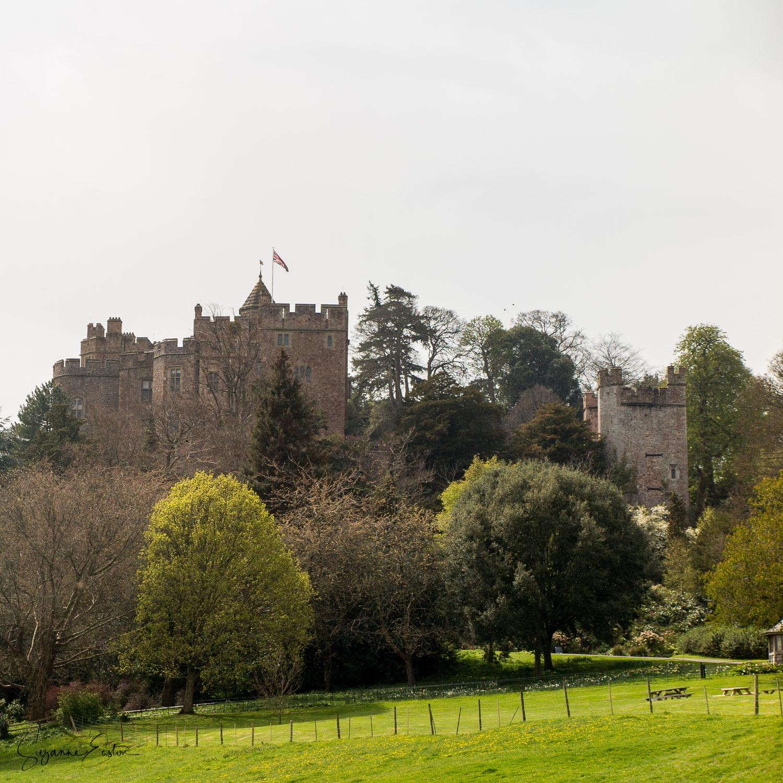 Dunster Castle in Somerset