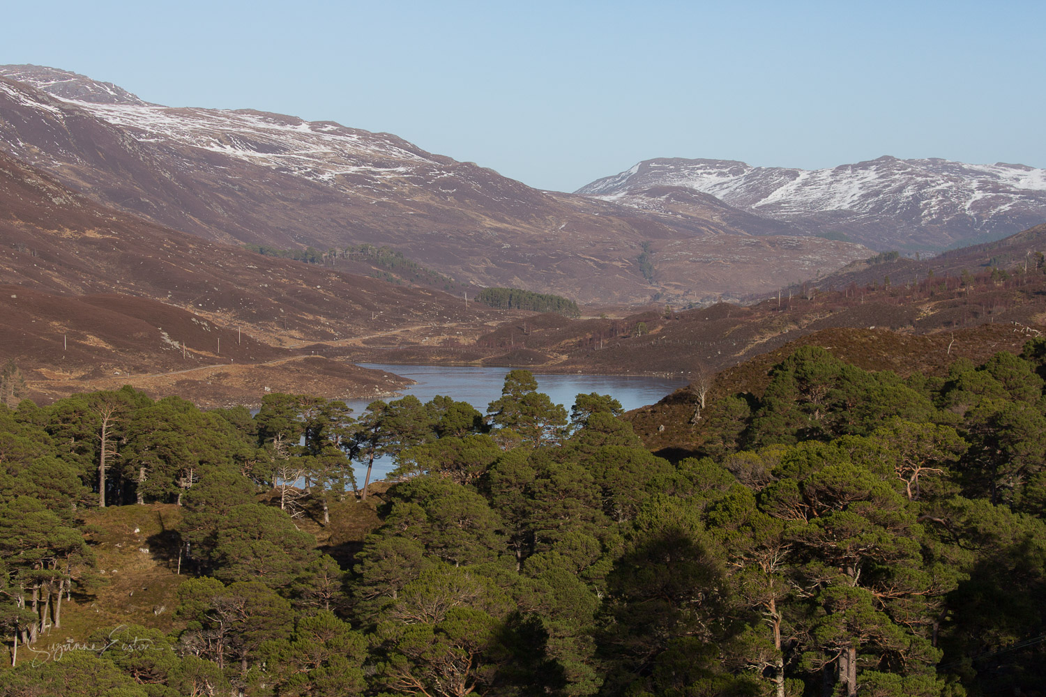 Glen Cannich in the Scottish highlands