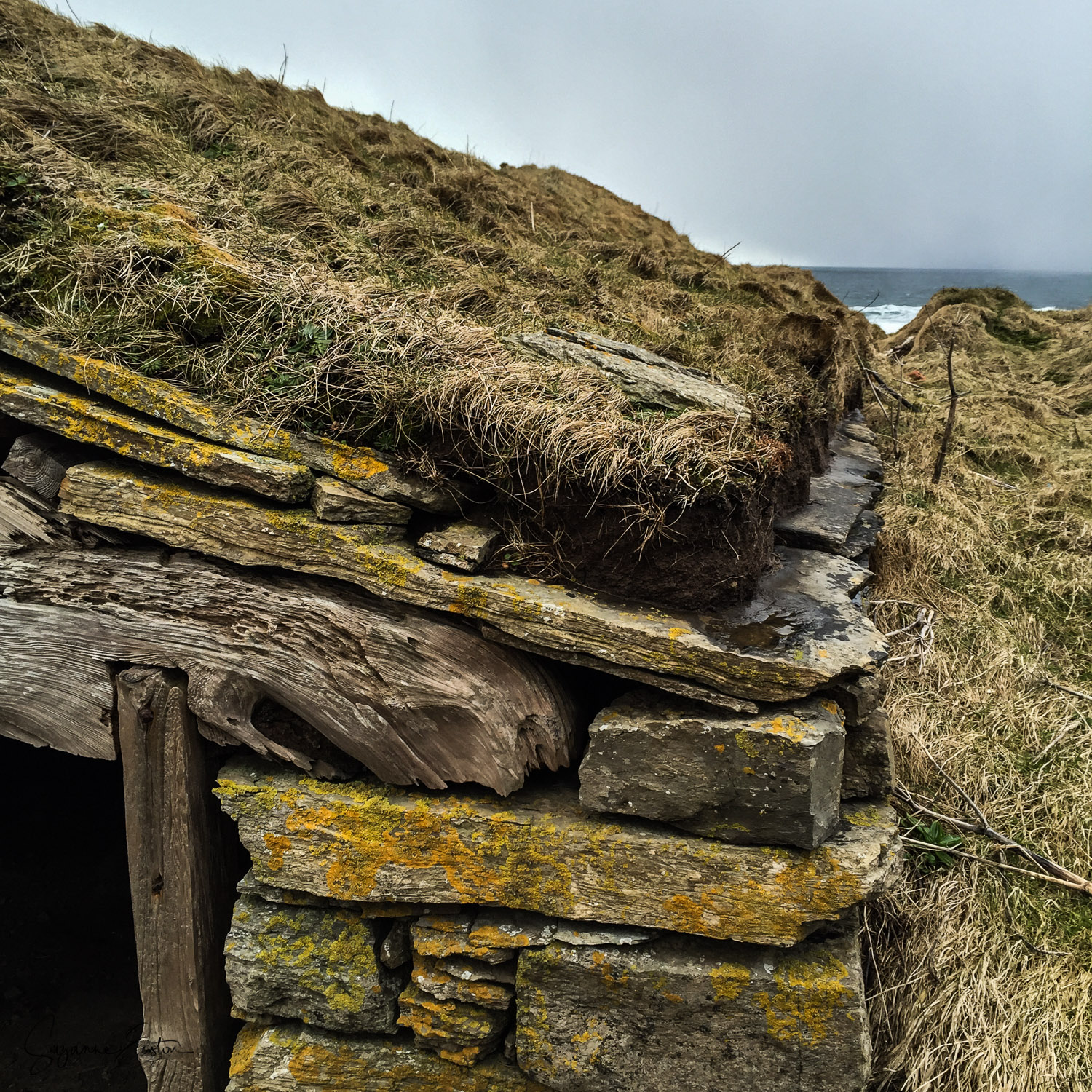 The roofline of a fishermans hut at Marwick