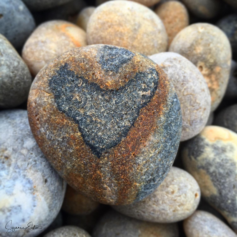 Heart pebble on Chesil beach