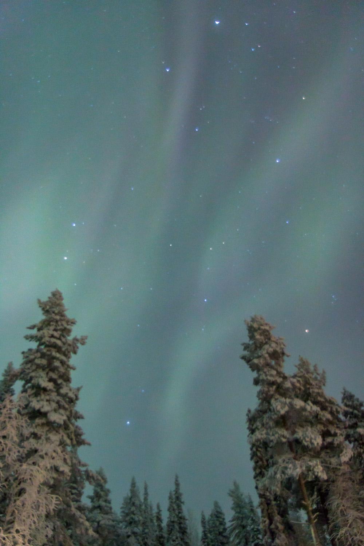 aurora Finland-8.jpg