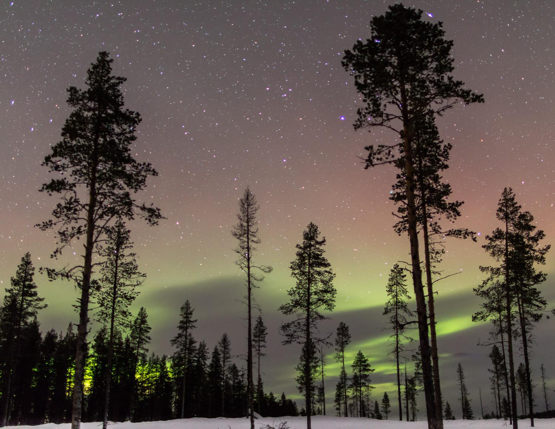 aurora Sweden-2.jpg