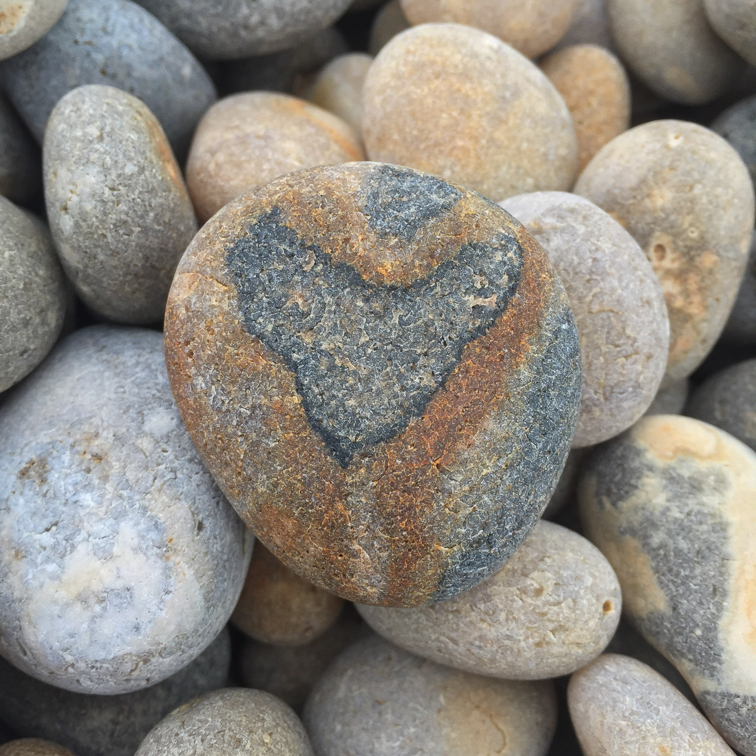Pebble with  a heart