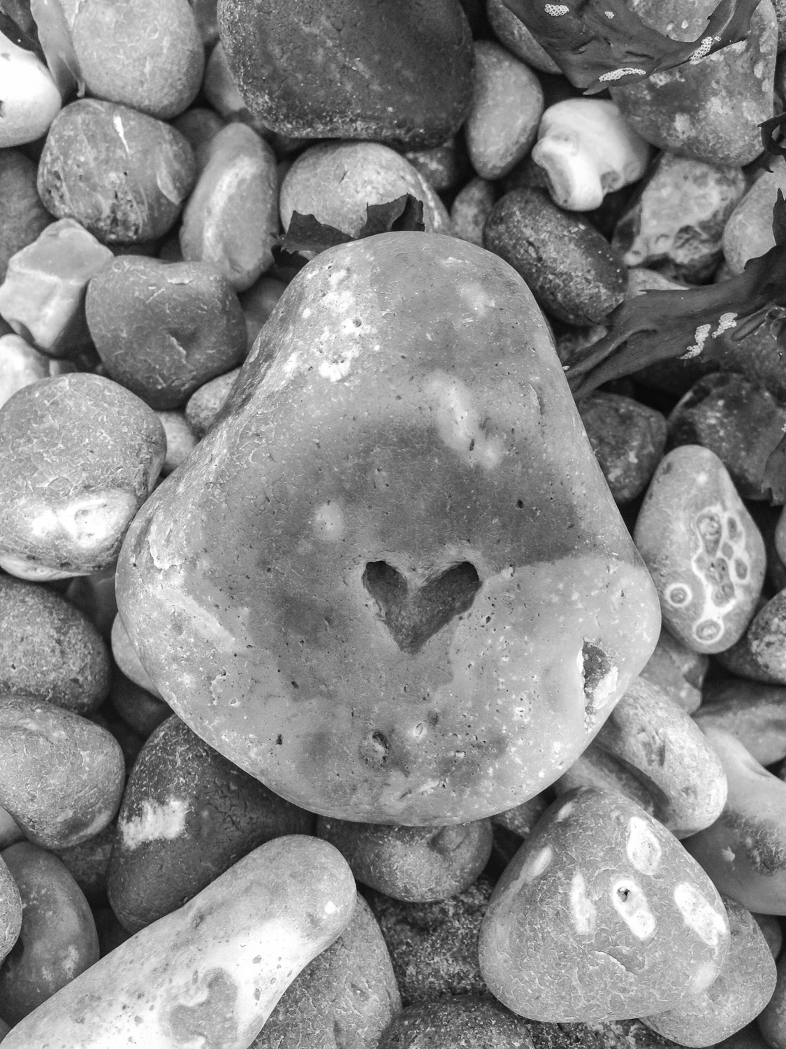 Pebble with a heart shaped dimple on Branscombe Beach