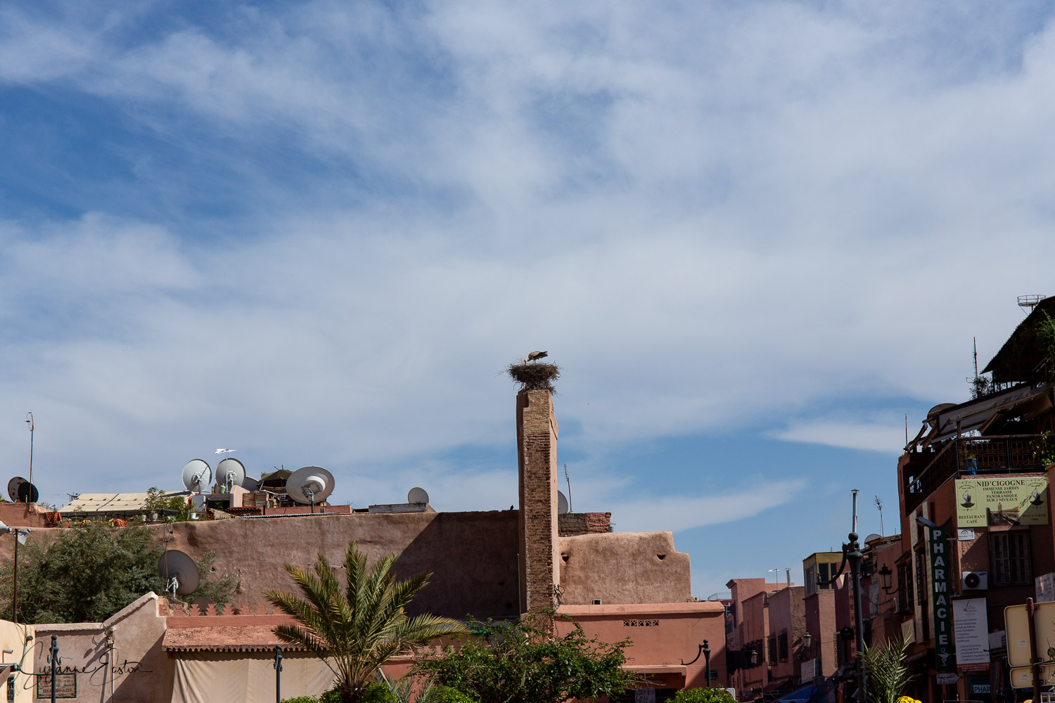 A stork makes its nest in the ruins of the Old Palace in the centre of Marrakech
