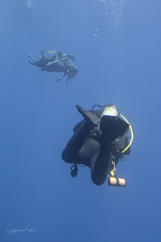 debris dive.jpg