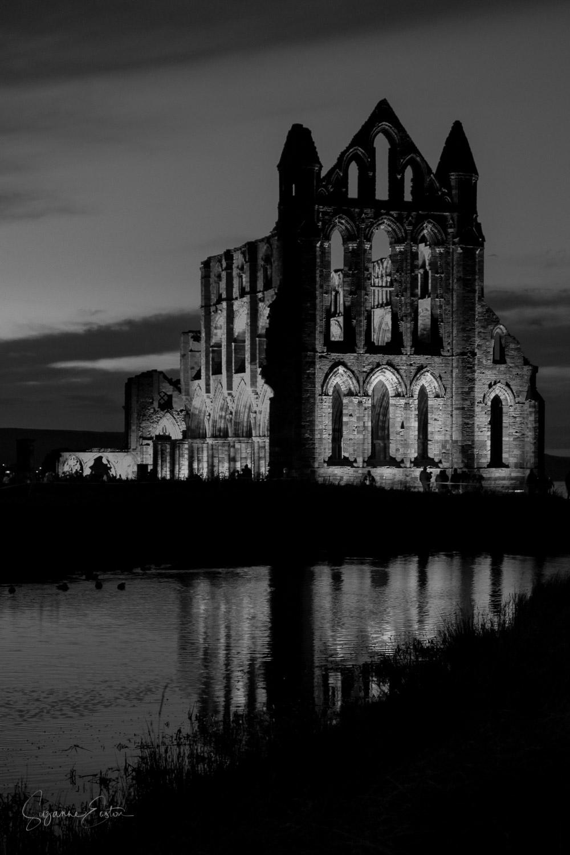 whitby abbey-5.jpg