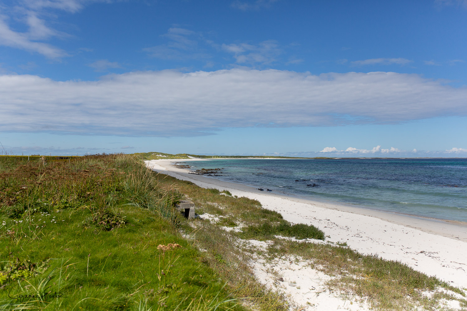 Scuthvie Bay on Sanday has gentle sand dunes