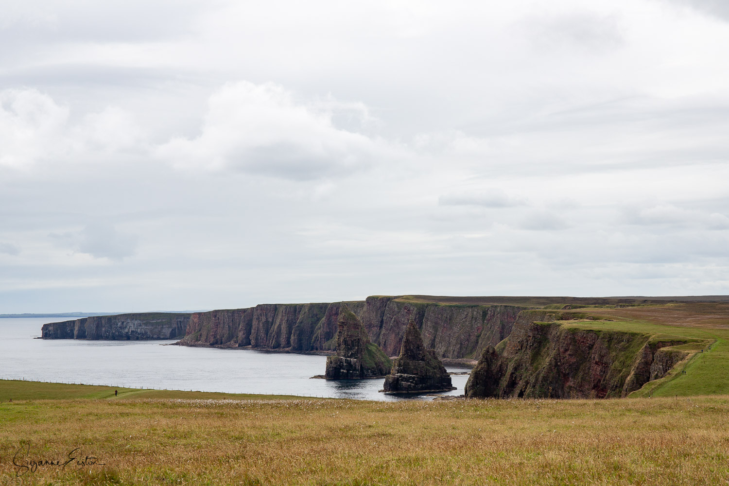Dunscansby-2.jpg