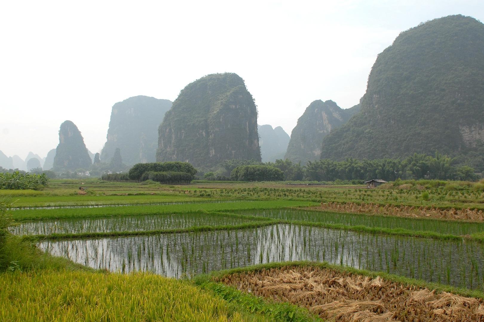 china-694647.jpg