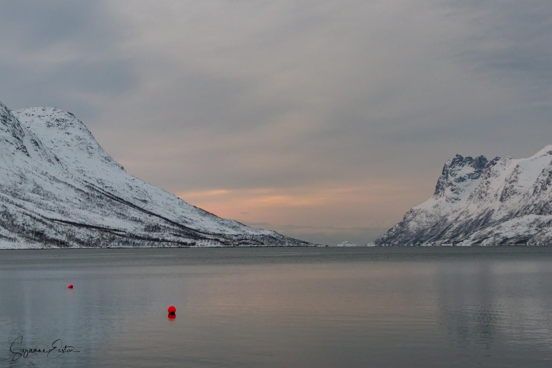Winter buoys