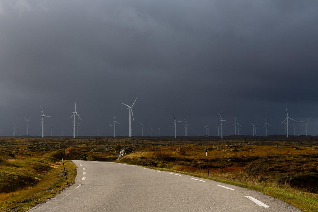 turbines-2.jpg