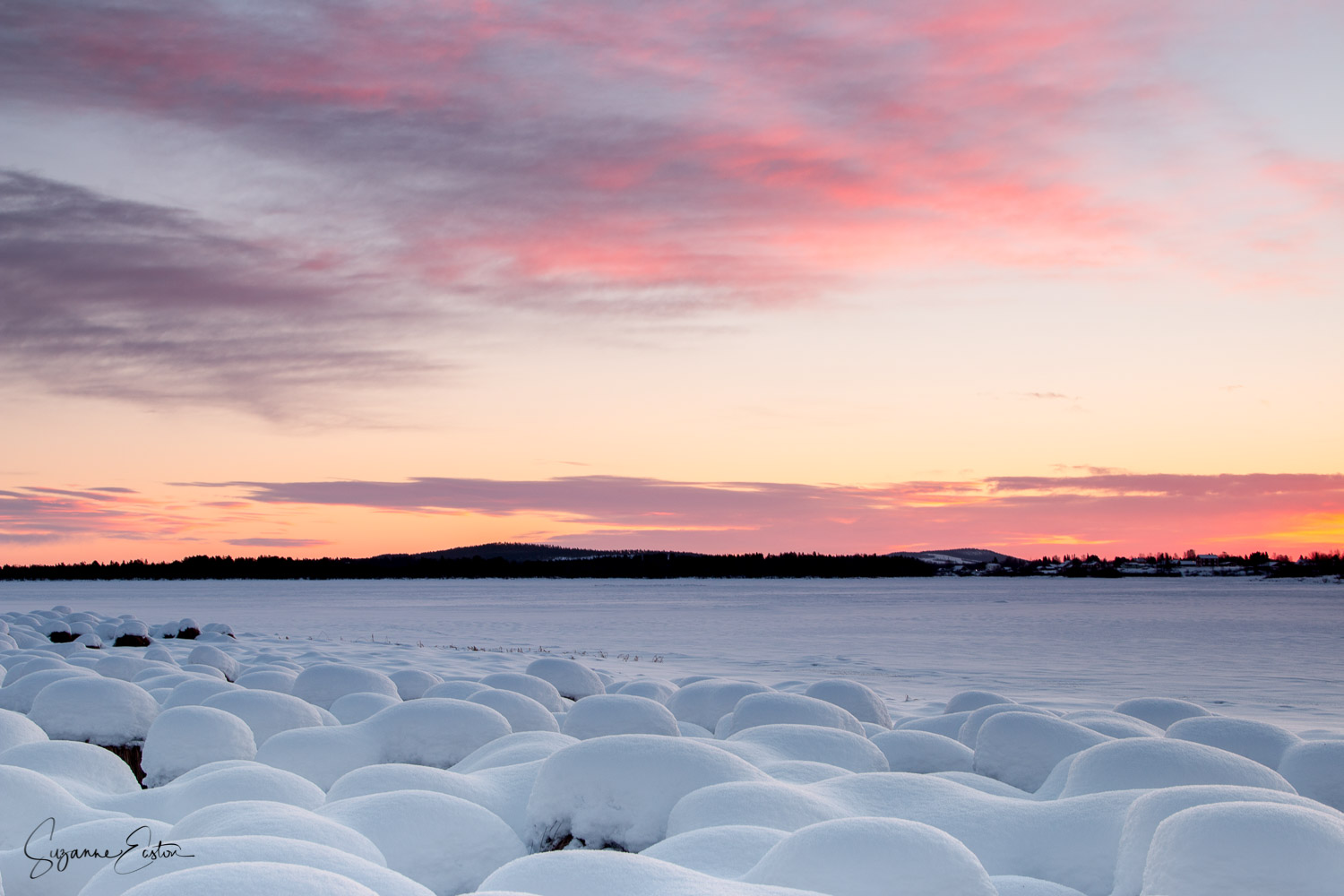 A frozen river with the reeds coated in snow looking like giant marshmallows