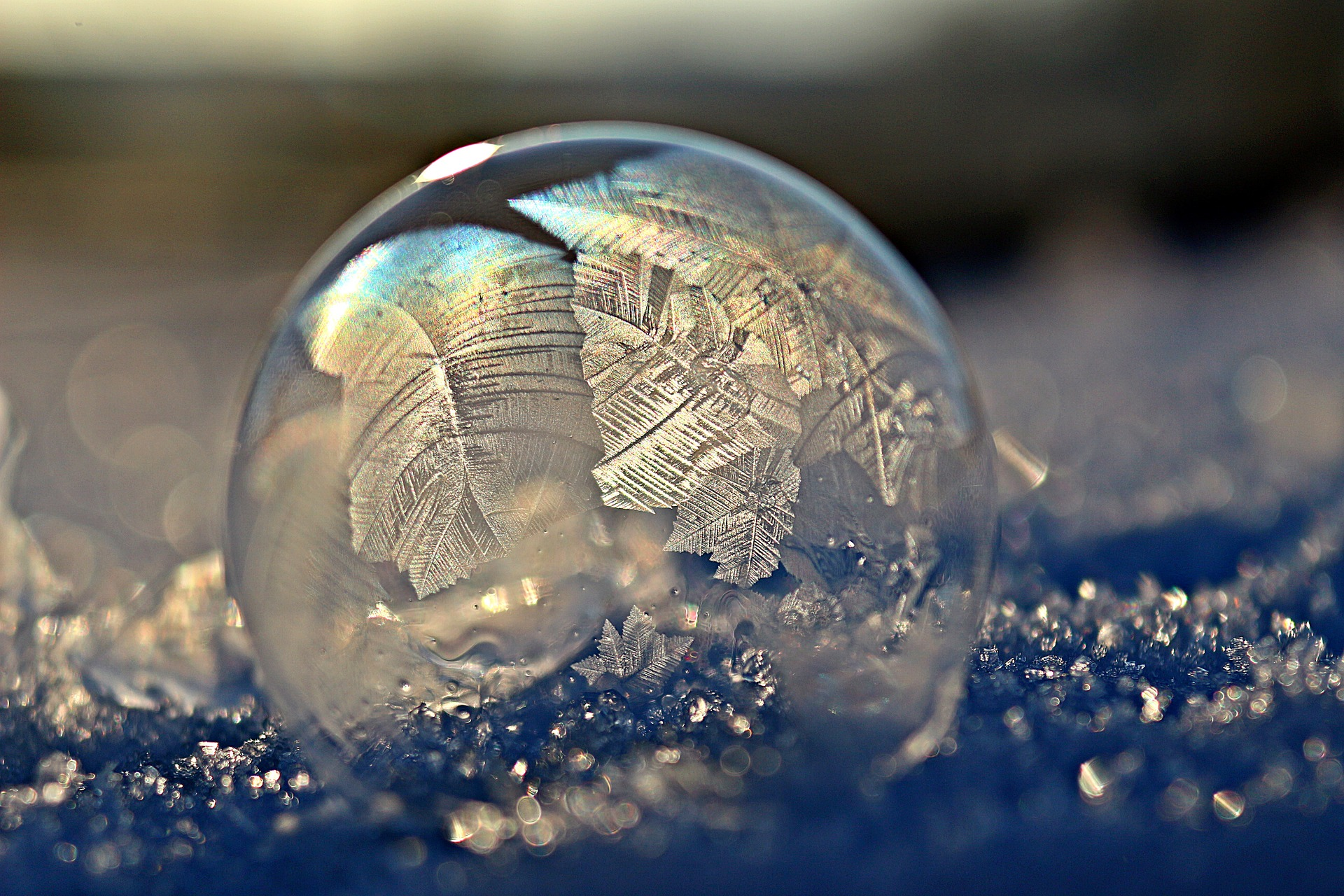 frozen bubble Pixabay holding image https://pixabay.com/photo-1984265/