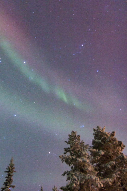 Curtains of aurora