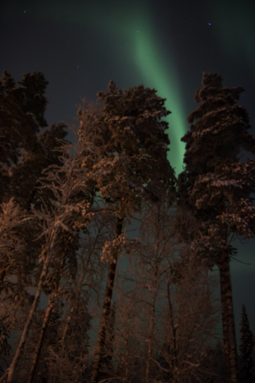 Wisp of northern lights