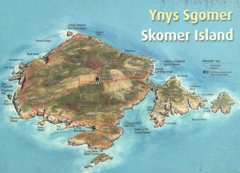 A map of Skomer Island in Pembrokshire