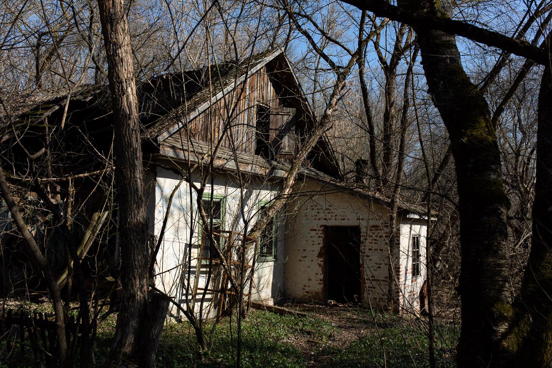 Building in Zalissya