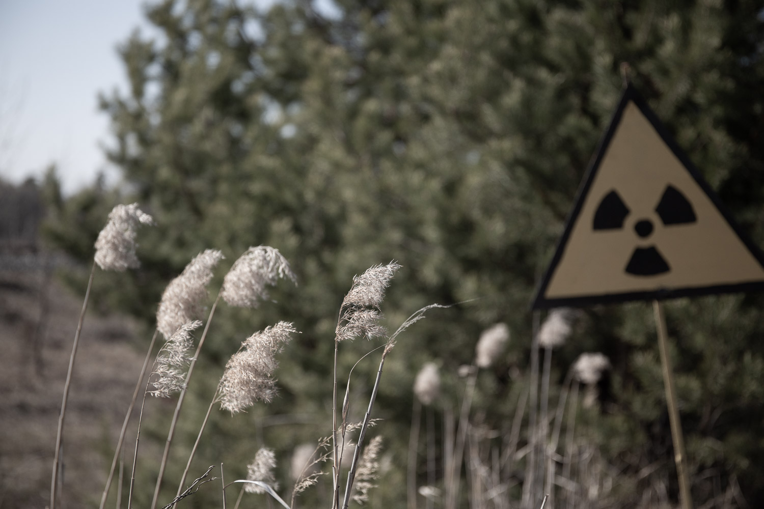Radiation sign in the Chernobyl Exclusion Zone