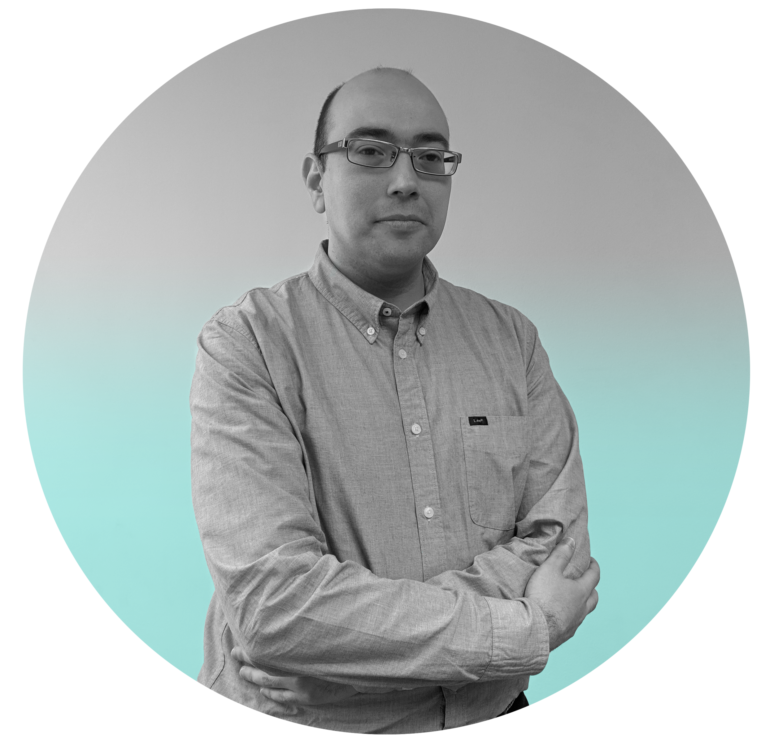 Expert in building, managing and validating tech platforms/roadmaps.  With over fifteen years of experience in web applications, large databases, complex systems and security and one year researching and testing solutions using Blockchain technologies as Ethereum smart-contracts.