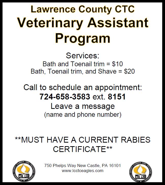 LCCTC Veterinary Assistant Program - Pet Grooming @ LCCTC
