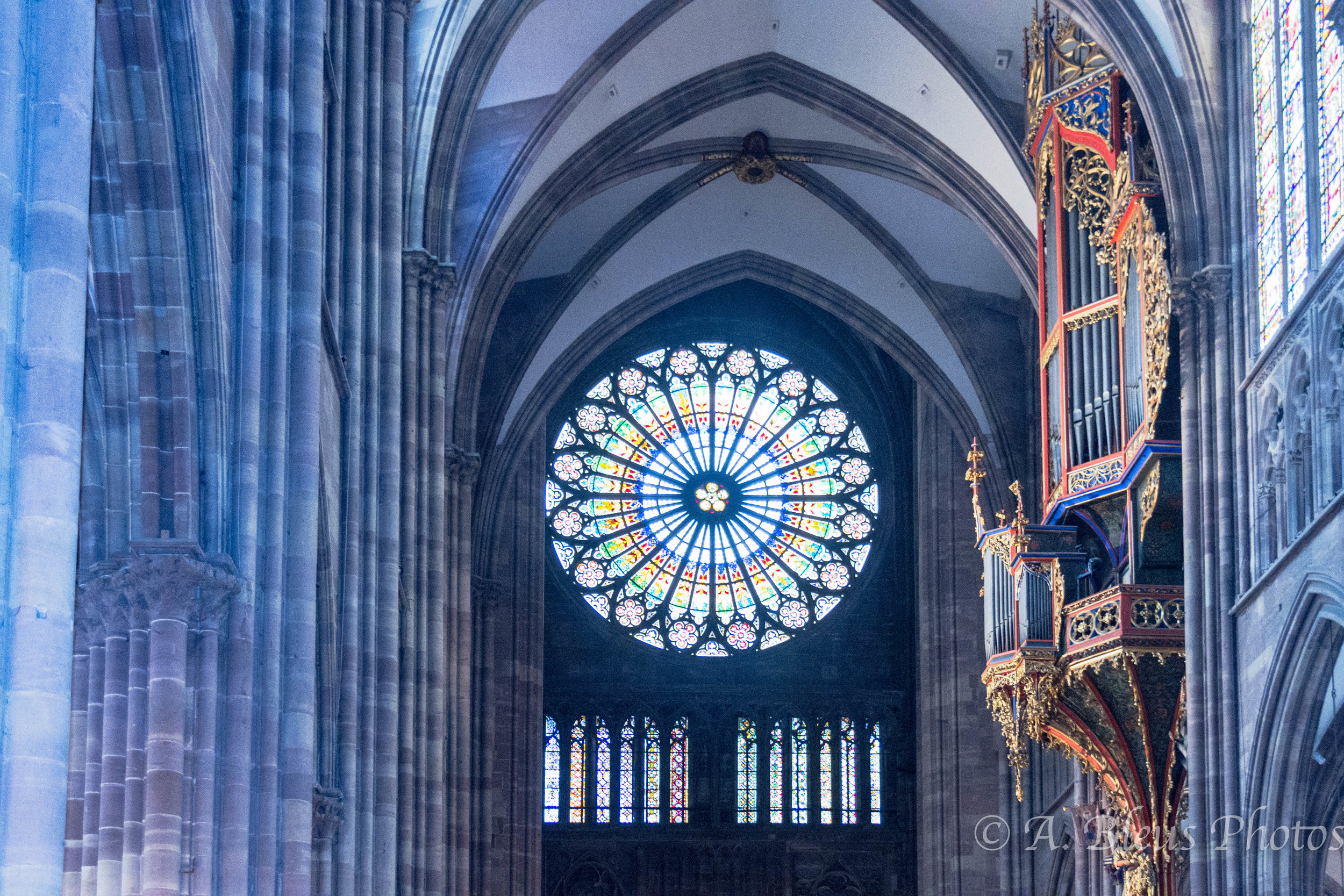 suspended-pipe-organ-and-stained-glass-strasbourg-cathedral.jpg