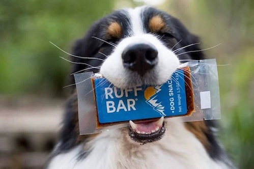 KEEP YOUR PUP FUELED FOR ADVENTURE WITH ORGANIC MEALS ON THE GO