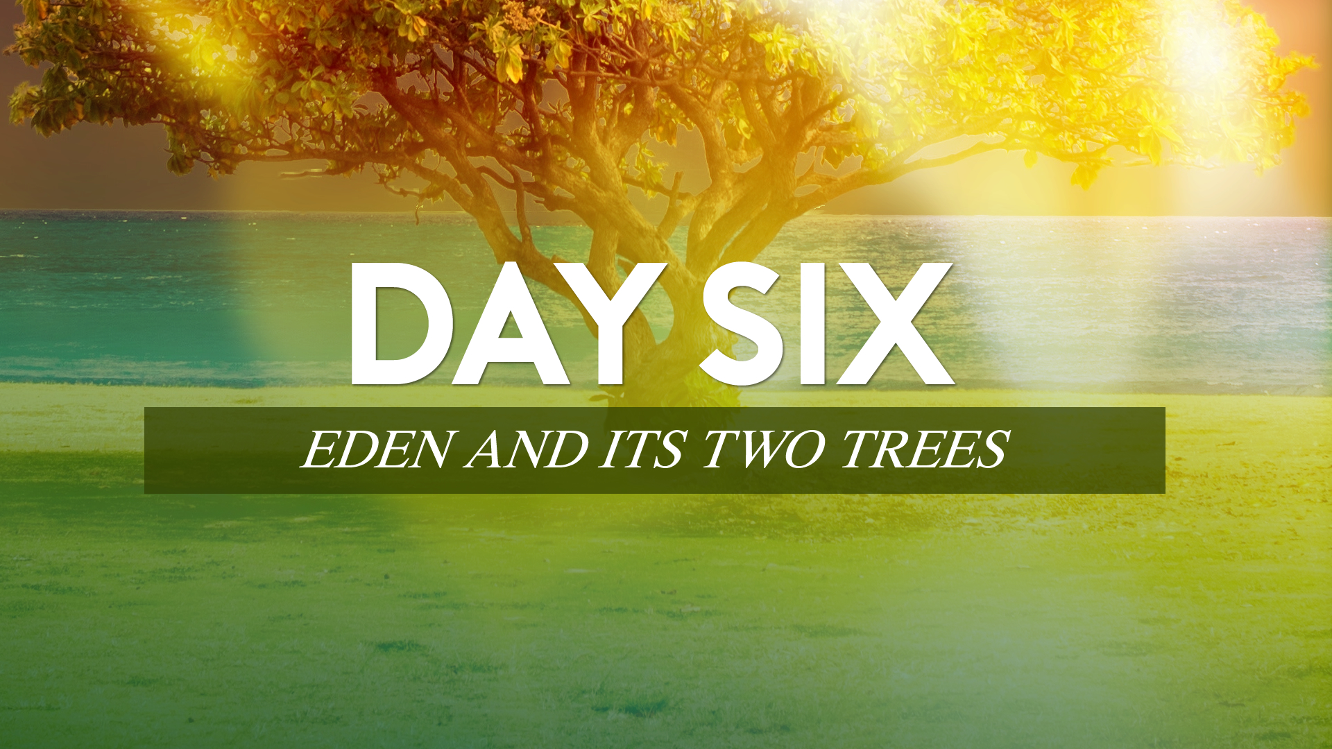 Day Six - Eden and Its Two Trees.jpg
