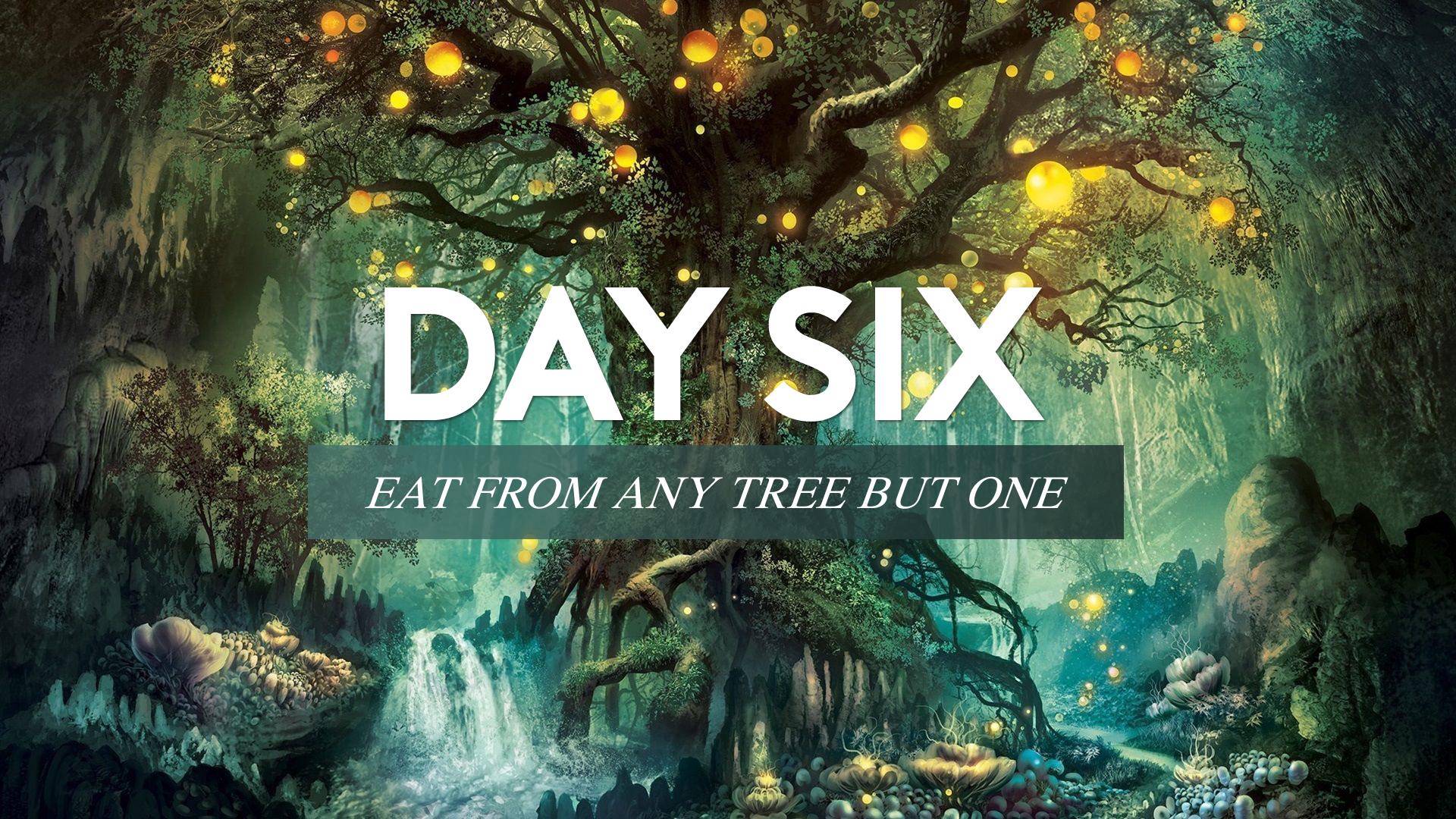 Day Six - Eat From Any Tree But One.jpg