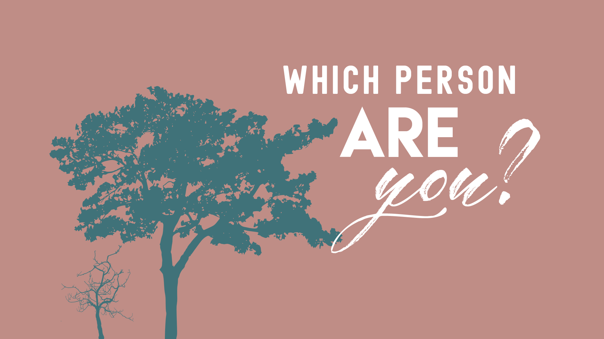 Which Person Are You - Psalm1.jpg