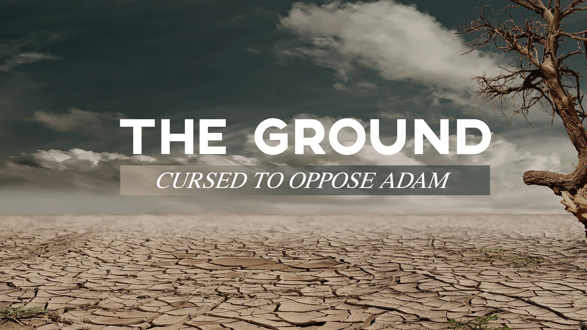 The Ground - Cursed to Oppose Adam.jpg