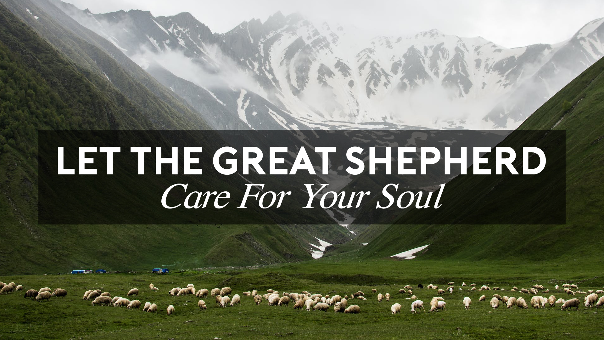Let the Great Shepherd Care for Your Soul.jpg