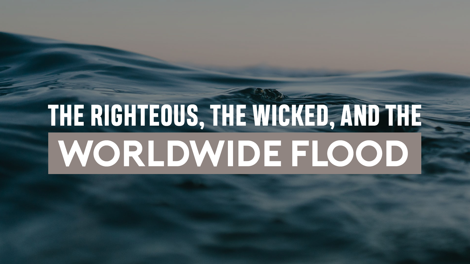 The Righteous, the Wicked, and the Worldwide Flood.jpg